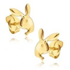 Náušnice ve žlutém 14K zlatě - lesklá hlava zajíčika Playboy