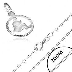 Náhrdelník ze stříbra 925 se znamením zvěrokruhu, VODNÁŘ AA33.02