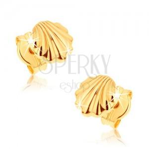 Náušnice ze žlutého 9K zlata - lesklé mořské mušle