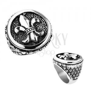 Prsten z oceli, stříbrná barva, patina, Fleur de Lis v kruhu, srdíčka