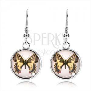 Cabochon náušnice visící na afro háčcích, žluto-hnědý motýl