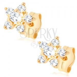 Zlaté náušnice 375 - čirý zirkonový kvítek, vyvýšený střed, puzetky