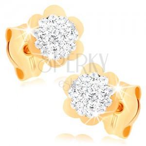 Náušnice ve žlutém 9K zlatě - třpytivý kvítek s lesklým lemem, křišťály Swarovski