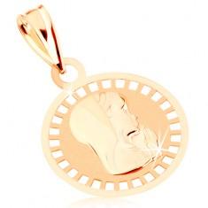 Přívěsek ze žlutého 9K zlata - kruhový medailon s Pannou Marií, lesklo-matný