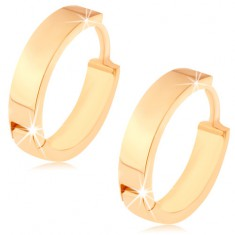 Náušnice ve žlutém 14K zlatě - malý kruh se zrcadlově lesklým povrchem