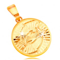 Přívěsek ve žlutém 14K zlatě - kruh s blýskavými paprskovitými zářezy - RYBY GG211.44