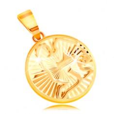 Kruhový 14K zlatý přívěsek - lesklé paprskovité zářezy, znamení VODNÁŘ GG211.39