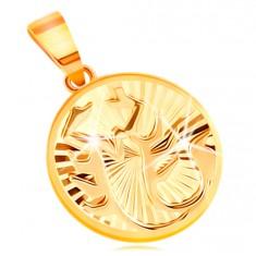Kruhový přívěsek ve 14K žlutém zlatě - blýskavé paprskovité rýhy, znamení ŠTÍR GG211.47