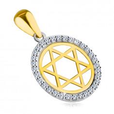Přívěsek ze 14K kombinovaného zlata - Davidova hvězda v kruhu se zirkonovým lemem